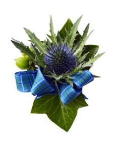 Gents Thistle Buttonhole